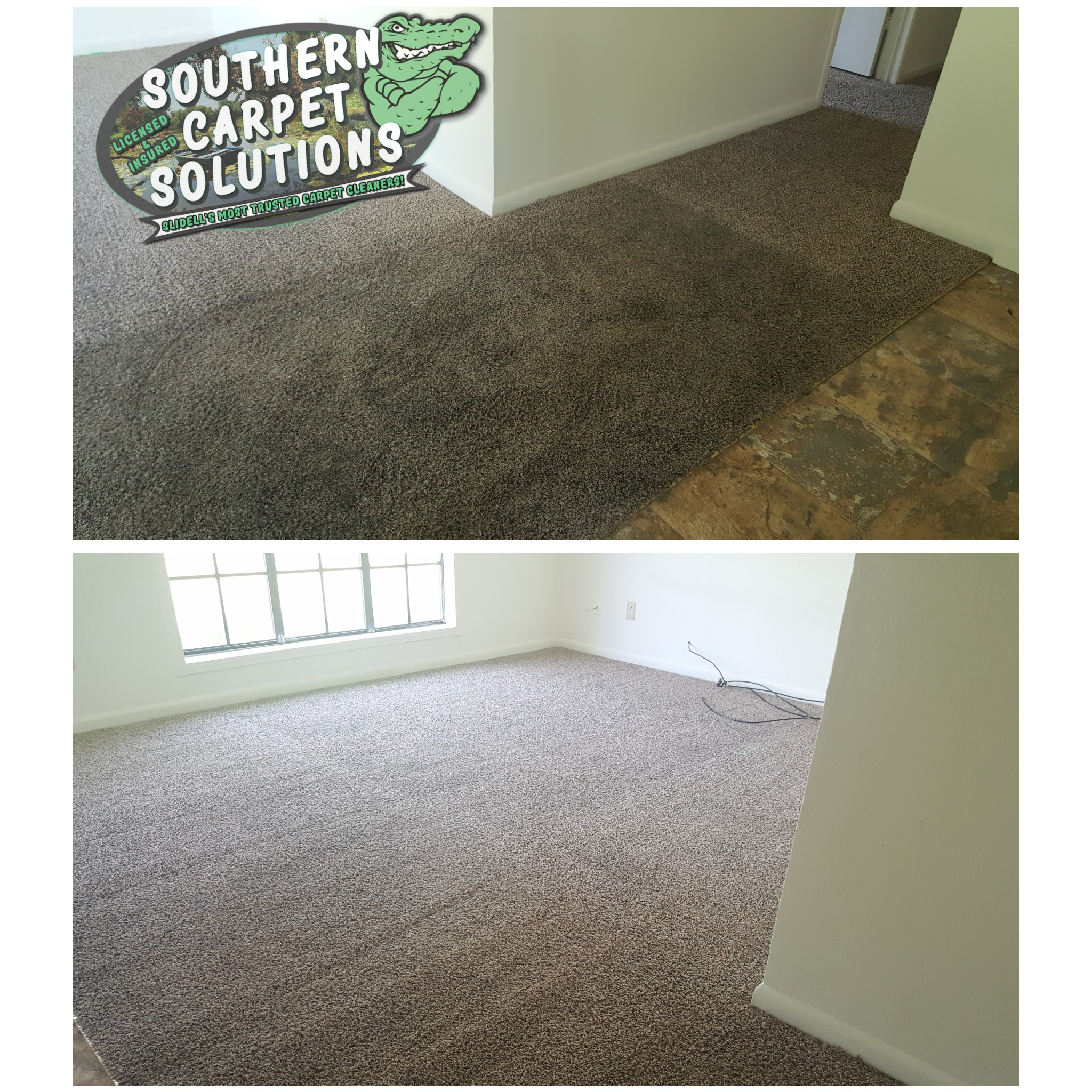 before-and-after-carpet-cleaning
