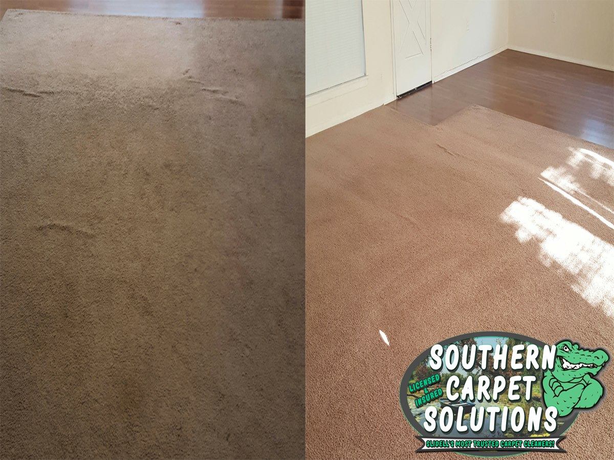 amazing-results-carpet-cleaning-southerncarpetsolutions