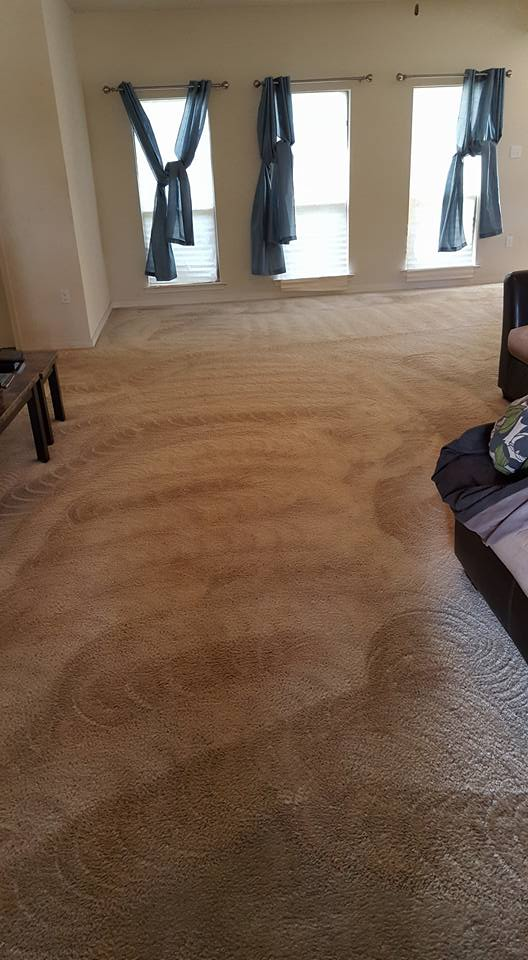 commercial-carpet-cleaning-southerncarpetsolutions