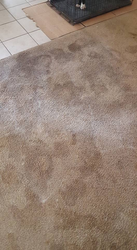 dirty-carpet-restoration-slidell,LA