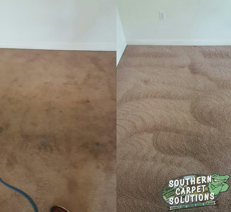 drying-carpet-southerncarpetsolutions