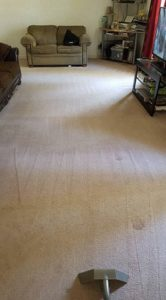 Five Tips Before Carpet Cleaning