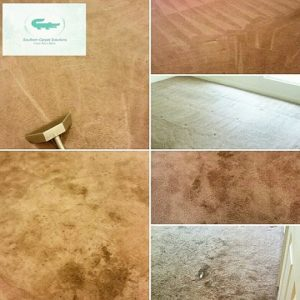 Ever Have Gum In Your Carpet? Tips On How To Remove
